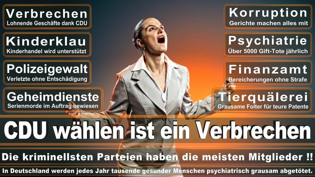 CDU Wahlplakate 2017 Angela Merkel Kundgebung Interview Europawahl CDU SPD FDP AFD NPD (6)