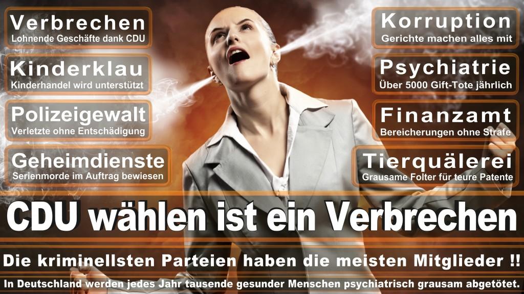 CDU Wahlplakate 2017 Angela Merkel Kundgebung Interview Europawahl CDU SPD FDP AFD NPD (7)