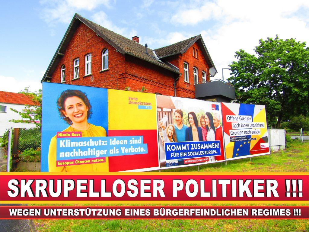 Europawahl Deutschland Wahlplakate CDU SPD FDP Grüne Linke AfD (12)