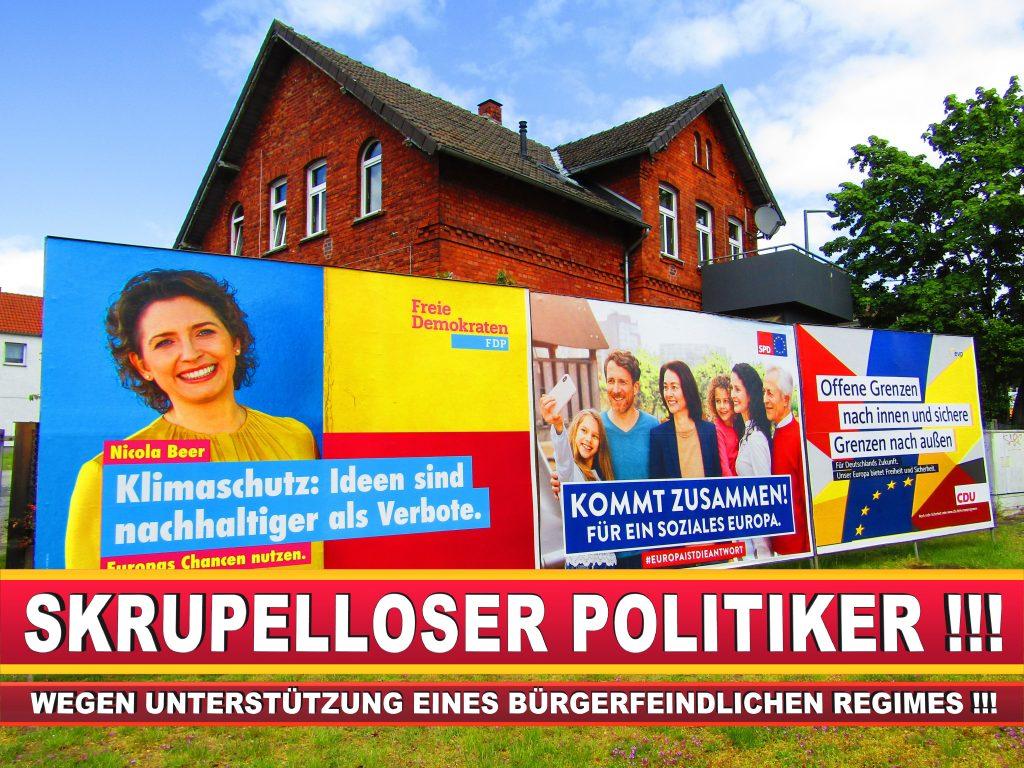 Europawahl Deutschland Wahlplakate CDU SPD FDP Grüne Linke AfD (13)