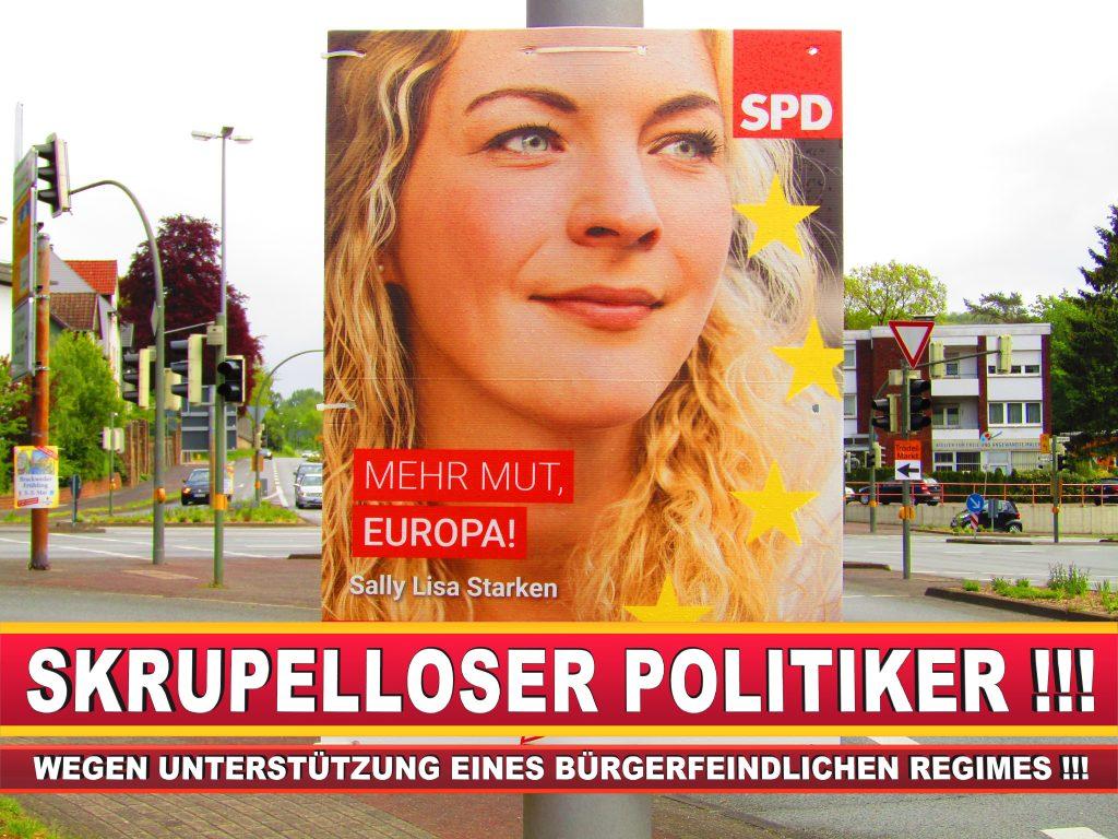 Europawahl Deutschland Wahlplakate CDU SPD FDP Grüne Linke AfD (14)