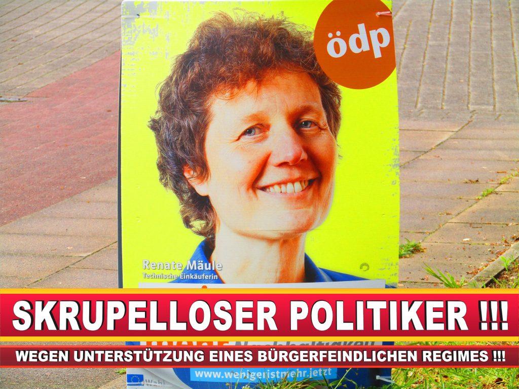 Europawahl Deutschland Wahlplakate CDU SPD FDP Grüne Linke AfD (15)