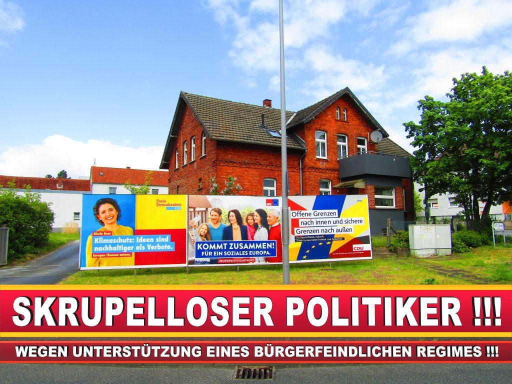 Europawahl Deutschland Wahlplakate CDU SPD FDP Grüne Linke AfD (2)
