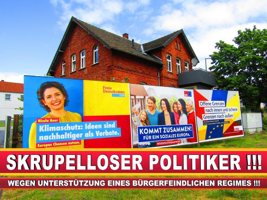 Europawahl Deutschland Wahlplakate CDU SPD FDP Grüne Linke AfD (3)