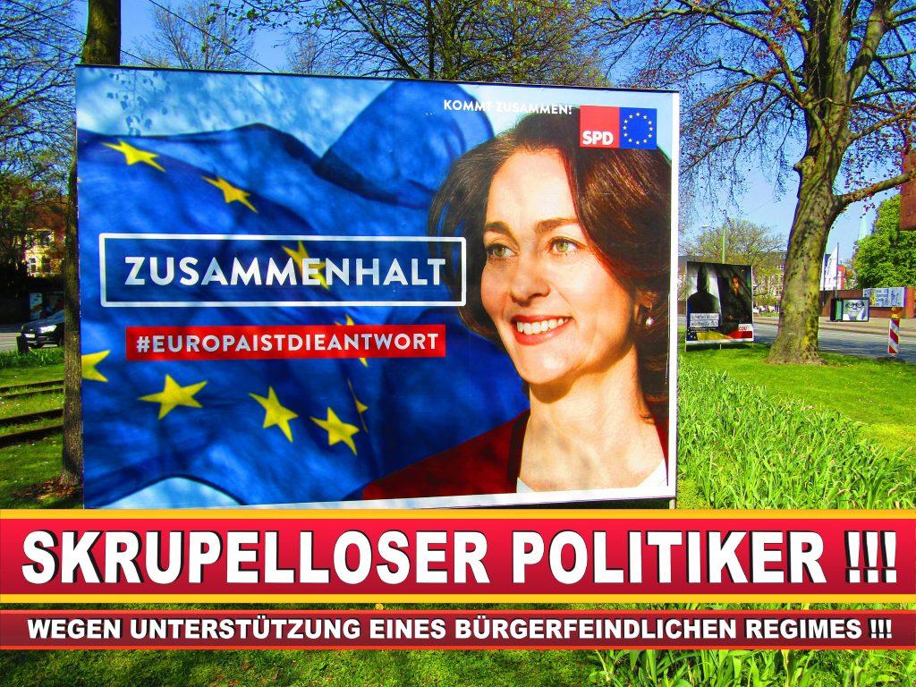 Europawahl Deutschland Wahlplakate CDU SPD FDP Grüne Linke AfD (38)