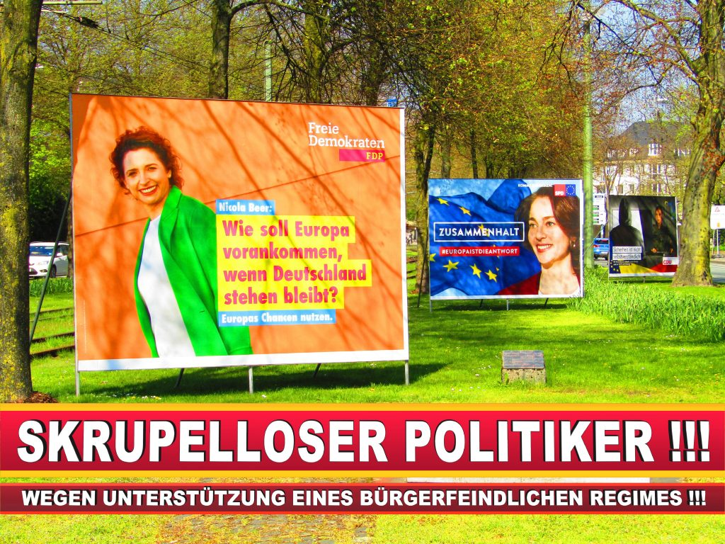 Europawahl Deutschland Wahlplakate CDU SPD FDP Grüne Linke AfD (49)