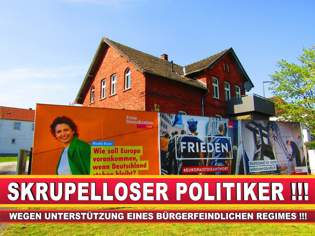 Europawahl Deutschland Wahlplakate CDU SPD FDP Grüne Linke AfD (86)
