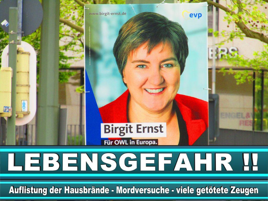 Europawahl 2019 Özlem Alev Demirel Wahlplakat CDU (35) 2
