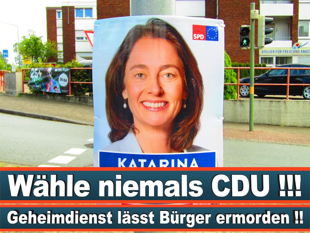Europawahl 2019 1 Patrick Breyer Wahlplakat Europawahl Deutschland Wahlwerbung Stimmzettel Umfrage Termin Prognose Parteien Kandidaten (27)