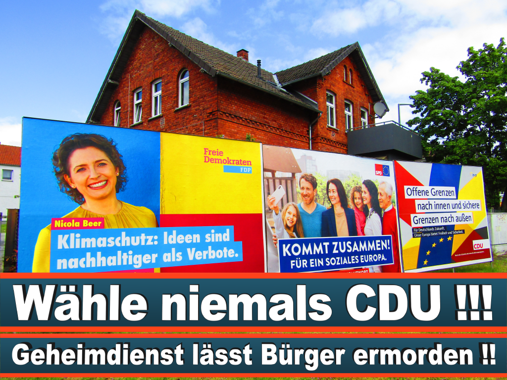 Europawahl 2019 Carl Grouwet Berlin Europawahl Deutschland Wahlwerbung Stimmzettel Umfrage Termin Prognose Parteien Kandidaten (14)