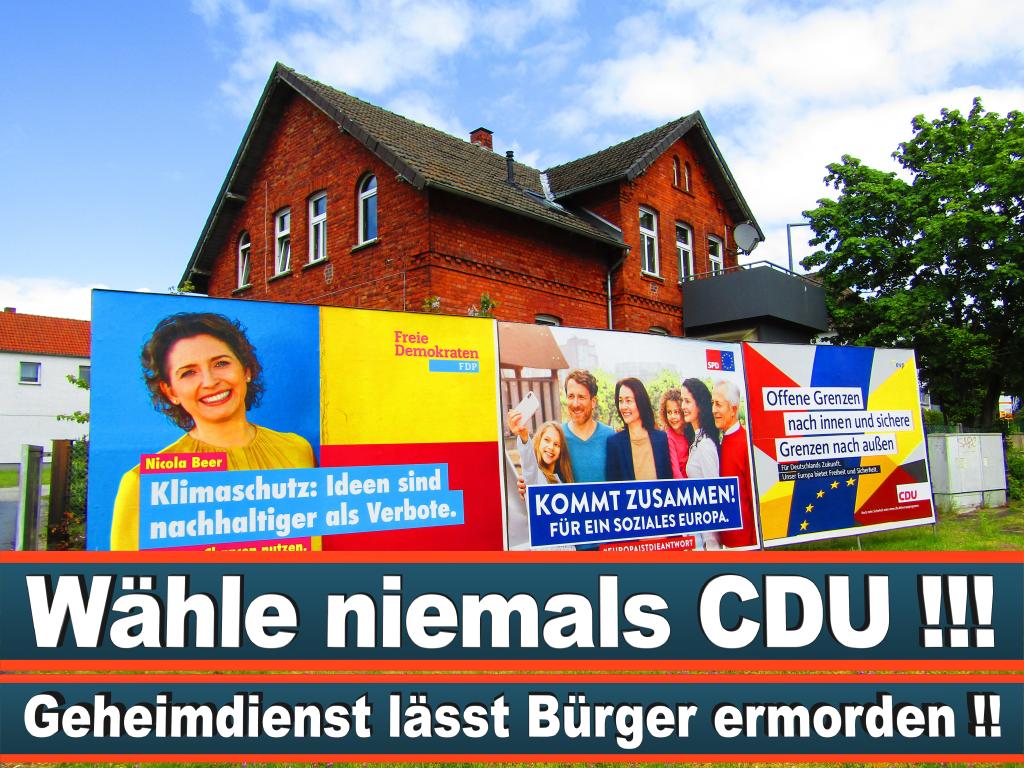 Europawahl 2019 Christine Anderson Wahlplakat Europawahl Deutschland Wahlwerbung Stimmzettel Umfrage Termin Prognose Parteien Kandidaten (2)
