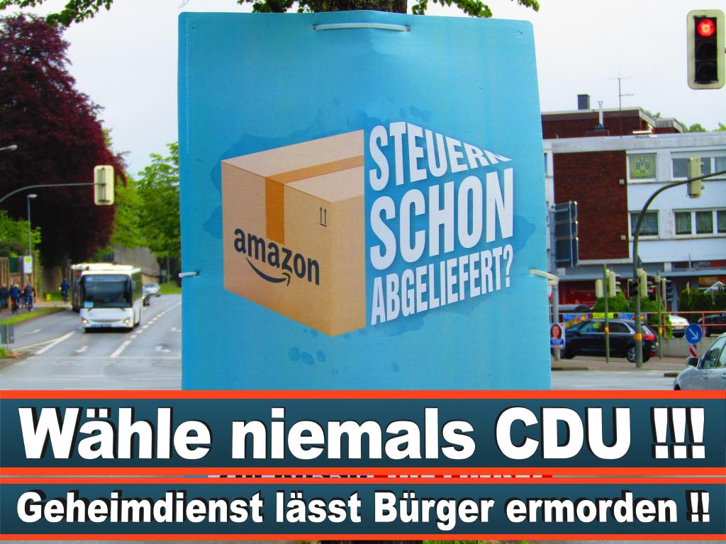 Europawahl 2019 Cornelia Birkner Wahlplakat Europawahl Deutschland Wahlwerbung Stimmzettel Umfrage Termin Prognose Parteien Kandidaten (19)