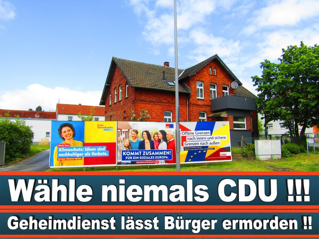 Europawahl 2019 Dr Nicolaus Fest Wahlplakat Europawahl Deutschland Wahlwerbung Stimmzettel Umfrage Termin Prognose Parteien Kandidaten (1)