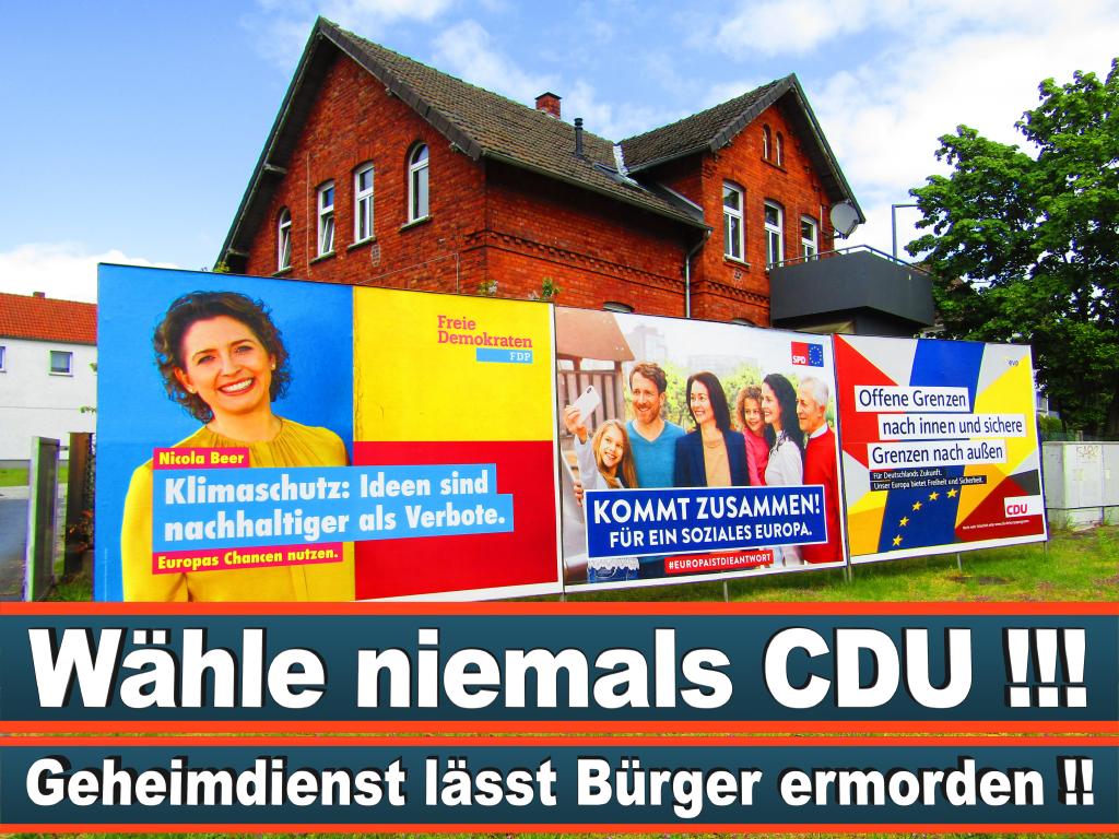 Europawahl 2019 Dr Thorsten Lieb Hessen Europawahl Deutschland Wahlwerbung Stimmzettel Umfrage Termin Prognose Parteien Kandidaten (11)