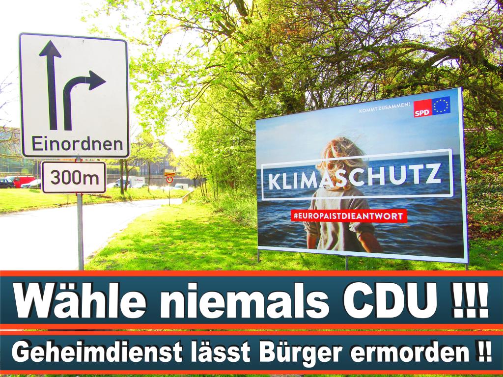 Europawahl 2019 Frauke Heß Tchokam Künstlername Frauke Hess Europawahl Deutschland Wahlwerbung Stimmzettel Umfrage Termin Prognose Parteien Kandidaten (60)