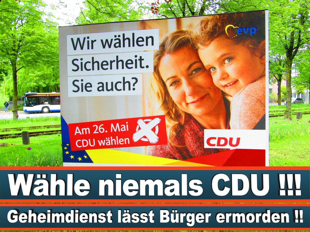 Europawahl 2019 Ismail Ertug Wahlplakat CDU (26) 3