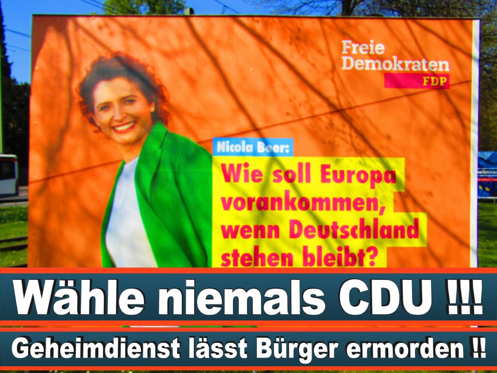 Europawahl 2019 Johanna Schubert Aus Hamburg Europawahl Deutschland Wahlwerbung Stimmzettel Umfrage Termin Prognose Parteien Kandidaten (37)