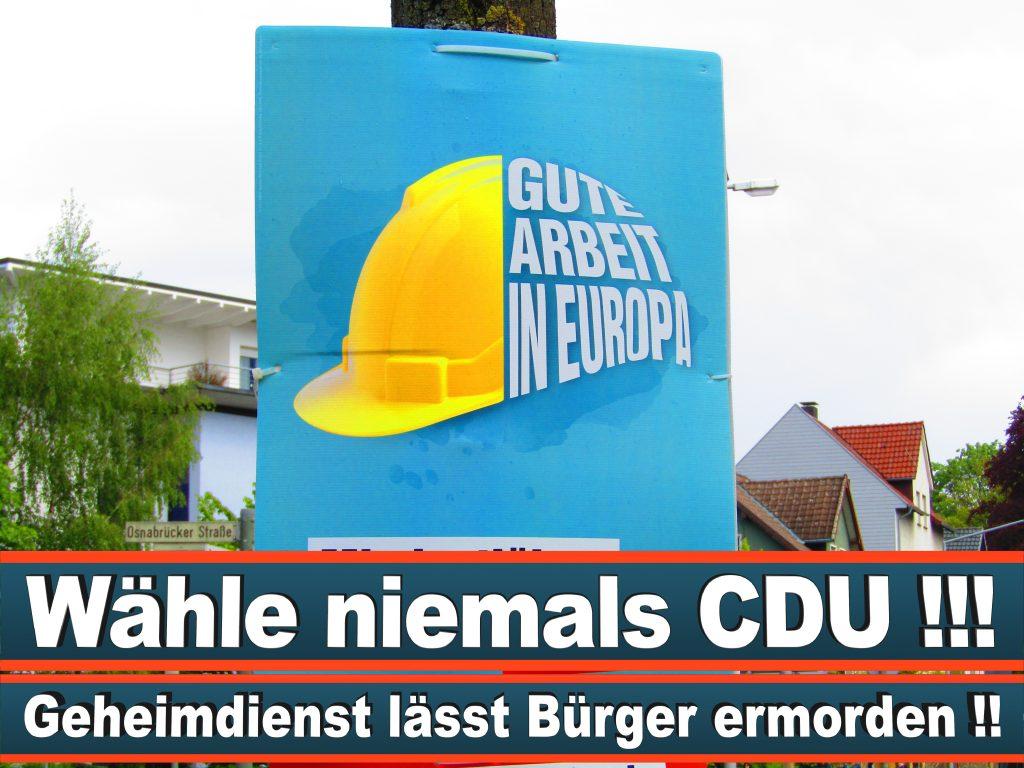 Europawahl 2019 Luisa Dechert Wahlplakat Europawahl Deutschland Wahlwerbung Stimmzettel Umfrage Termin Prognose Parteien Kandidaten (21)