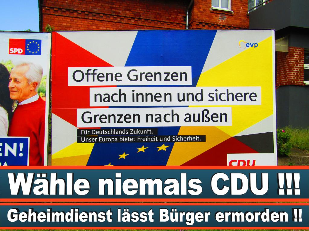 Europawahl 2019 Martin Schiller Wahlplakat Europawahl Deutschland Wahlwerbung Stimmzettel Umfrage Termin Prognose Parteien Kandidaten (6)
