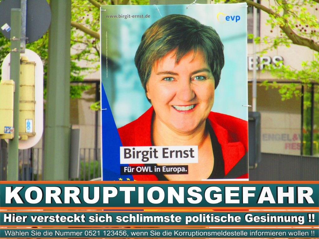 Europawahl 2019 Martin Schirdewan Wahlplakat CDU (35) 1