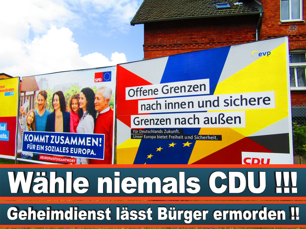 Europawahl 2019 Mike Moncsek Wahlplakat Europawahl Deutschland Wahlwerbung Stimmzettel Umfrage Termin Prognose Parteien Kandidaten (8)