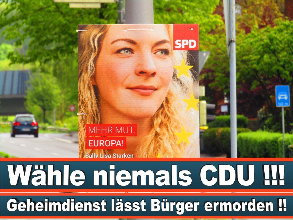 Europawahl 2019 Nicola Beer Wahlplakat Europawahl Deutschland Wahlwerbung Stimmzettel Umfrage Termin Prognose Parteien Kandidaten (17)