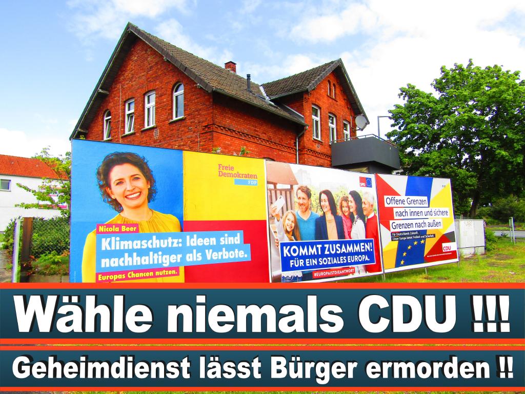 Europawahl 2019 Nicole Büttner Thiel Baden Württemberg Europawahl Deutschland Wahlwerbung Stimmzettel Umfrage Termin Prognose Parteien Kandidaten (13)