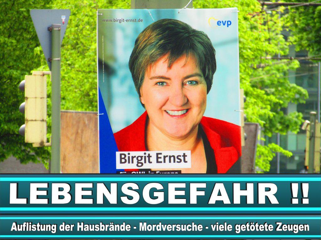 Europawahl 2019 Niklas Hendrik Nienaß Wahlplakat CDU (34) 2
