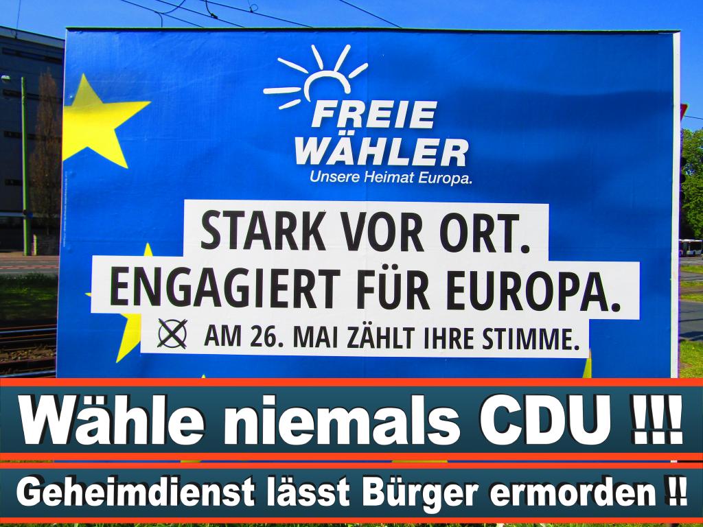 Europawahl 2019 Patricia Kopietz Aus Niefern Öschelbronn Europawahl Deutschland Wahlwerbung Stimmzettel Umfrage Termin Prognose Parteien Kandidaten (33)