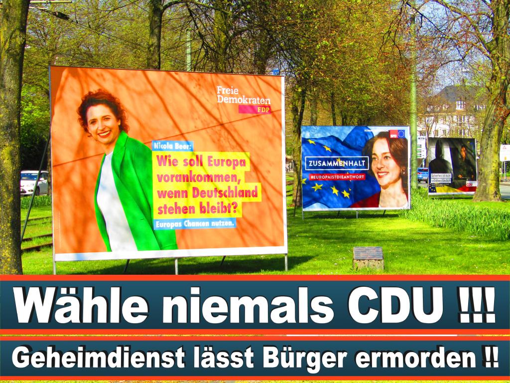 Europawahl 2019 Paula Stier Brandenburg Europawahl Deutschland Wahlwerbung Stimmzettel Umfrage Termin Prognose Parteien Kandidaten (50)