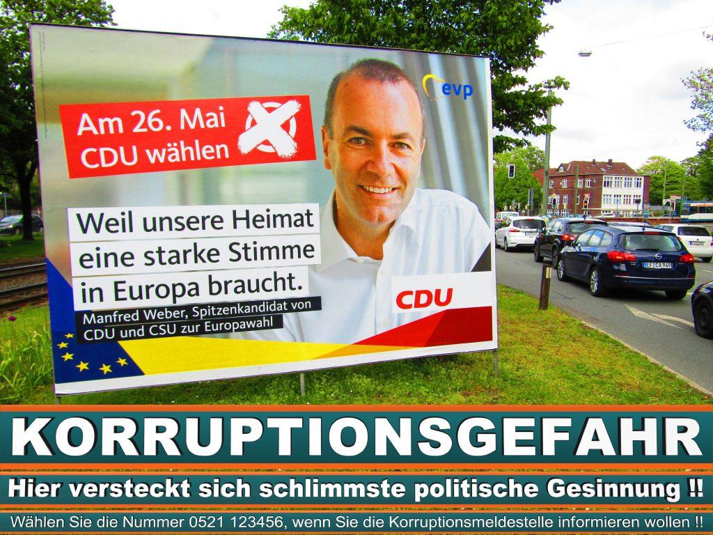 Europawahl 2019 Rainer Wieland Wahlplakat CDU (13) 1