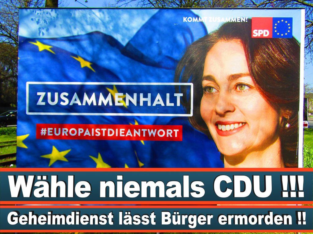 Europawahl 2019 Sebastian Schmidtke Berlin Europawahl Deutschland Wahlwerbung Stimmzettel Umfrage Termin Prognose Parteien Kandidaten (41)