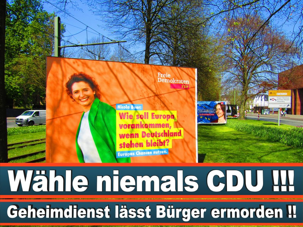 Europawahl 2019 Sonia Ellen Lühring Aus Freiburg BaWü Europawahl Deutschland Wahlwerbung Stimmzettel Umfrage Termin Prognose Parteien Kandidaten (35)