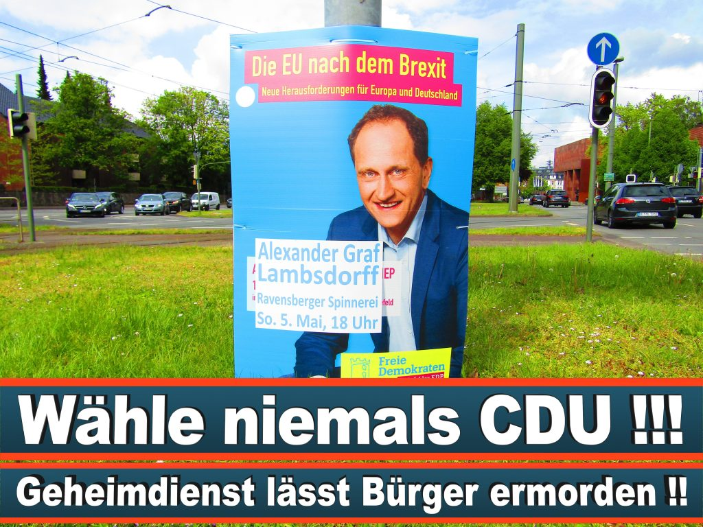 Europawahl 2019 Spitzenkandidat Damian Boeselager FDP (1) 3