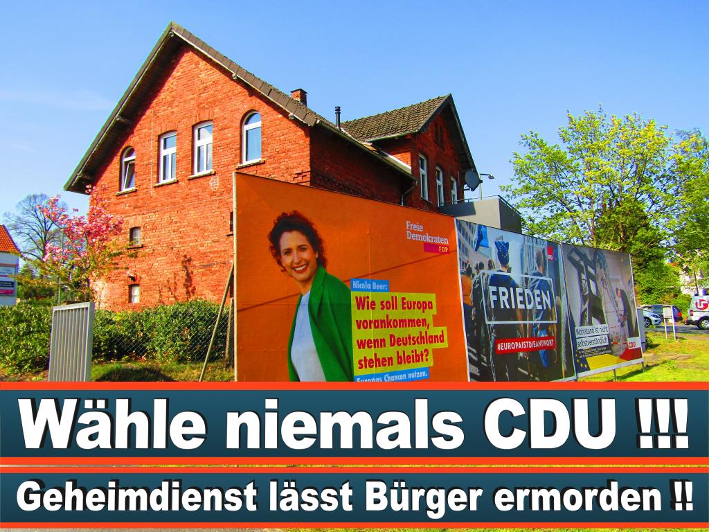 Europawahl 2019 Spitzenkandidat Felix Werth Europawahl Deutschland Wahlwerbung Stimmzettel Umfrage Termin Prognose Parteien Kandidaten (83)