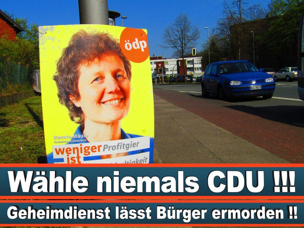 Europawahl 2019 Spitzenkandidat Olaf Harms Europawahl Deutschland Wahlwerbung Stimmzettel Umfrage Termin Prognose Parteien Kandidaten (81)