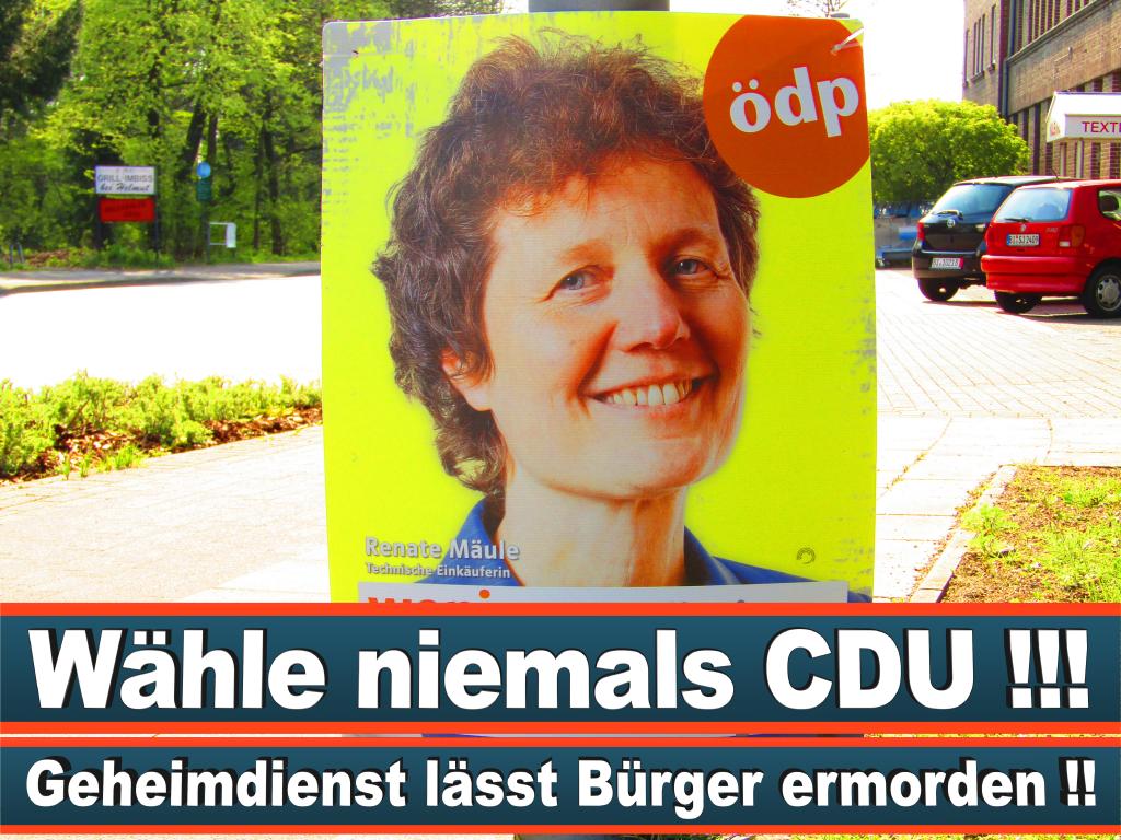 Europawahl 2019 Spitzenkandidatin Claudia Krüger Europawahl Deutschland Wahlwerbung Stimmzettel Umfrage Termin Prognose Parteien Kandidaten (98)