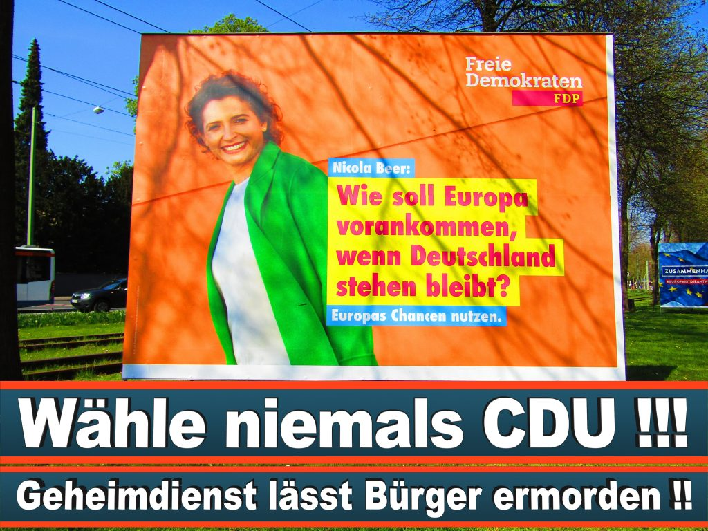 Europawahl 2019 Stefan Kolodziej Aus Calden Hessen Europawahl Deutschland Wahlwerbung Stimmzettel Umfrage Termin Prognose Parteien Kandidaten (38)