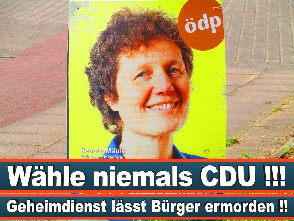 Europawahl 2019 Tina De Meeus D Argenteuil Auslandsgruppe Europawahl Deutschland Wahlwerbung Stimmzettel Umfrage Termin Prognose Parteien Kandidaten (16)