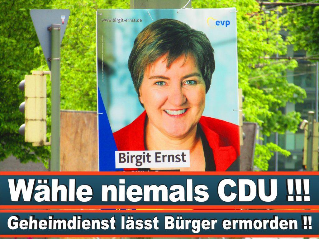 Europawahl 2019 Viola Von Cramon Wahlplakat CDU (34) 3