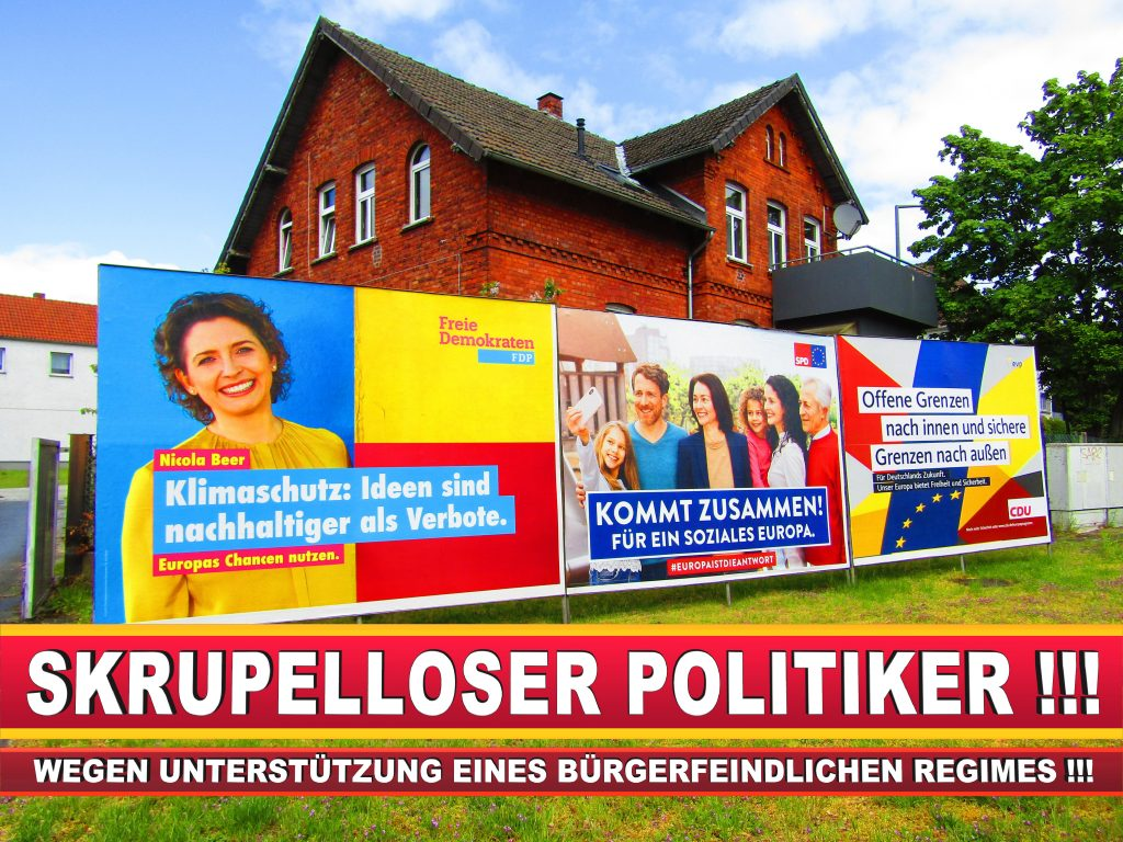 Europawahl Deutschland Wahlplakate CDU SPD FDP Grüne Linke AfD (10)
