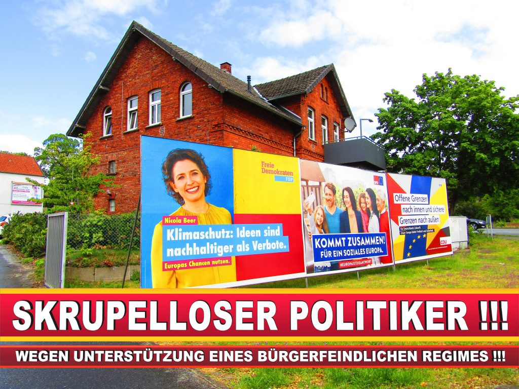 Europawahl Deutschland Wahlplakate CDU SPD FDP Grüne Linke AfD (11)