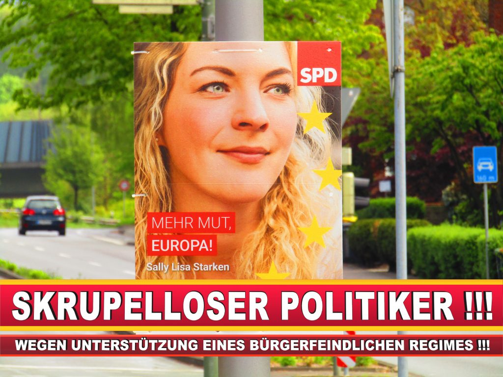 Europawahl Deutschland Wahlplakate CDU SPD FDP Grüne Linke AfD (16)