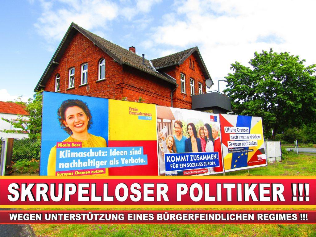 Europawahl Deutschland Wahlplakate CDU SPD FDP Grüne Linke AfD (4)