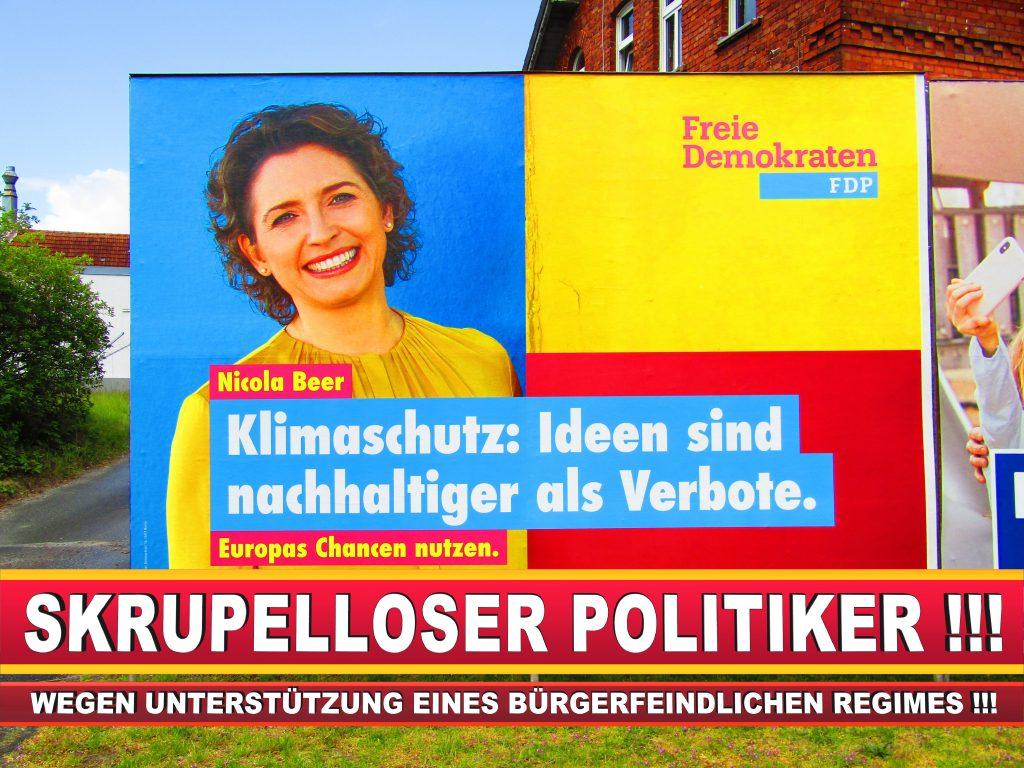 Europawahl Deutschland Wahlplakate CDU SPD FDP Grüne Linke AfD (5)