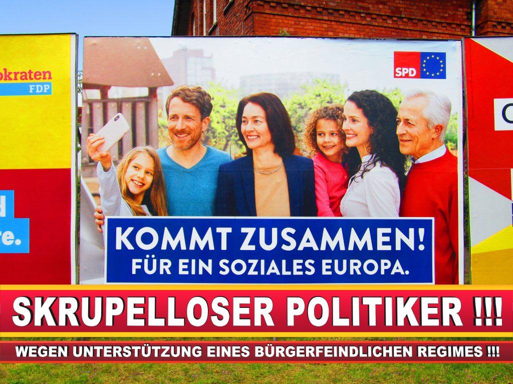 Europawahl Deutschland Wahlplakate CDU SPD FDP Grüne Linke AfD (6)