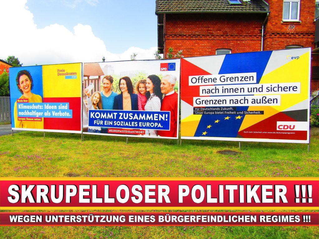 Europawahl Deutschland Wahlplakate CDU SPD FDP Grüne Linke AfD (9)
