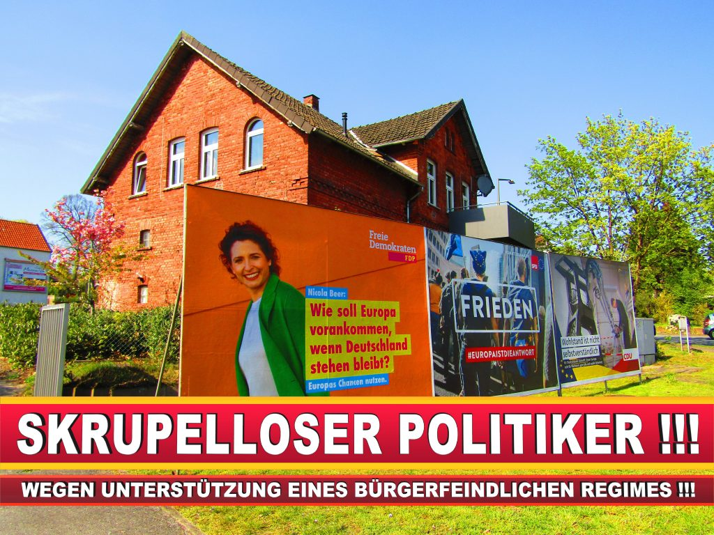 Europawahl Deutschland Wahlplakate CDU SPD FDP Grüne Linke AfD (93)