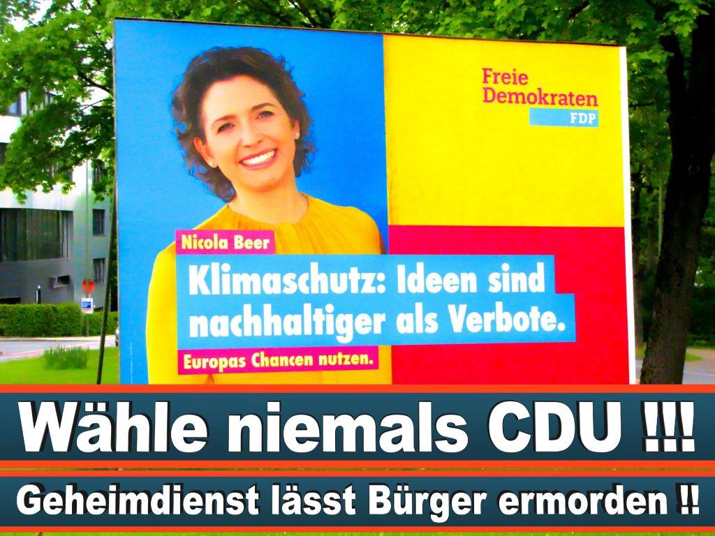 Wahlplakate Wahlwerbung Plakate Wesselmann (15)