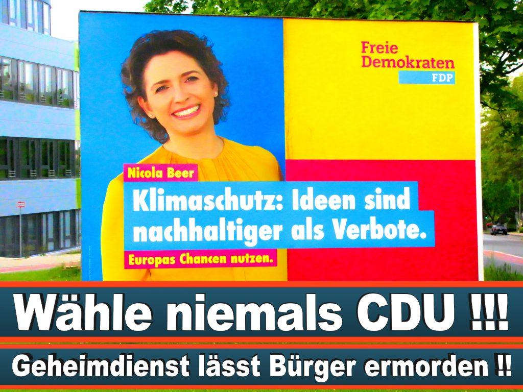 Wahlplakate Wahlwerbung Plakate Wesselmann (16)
